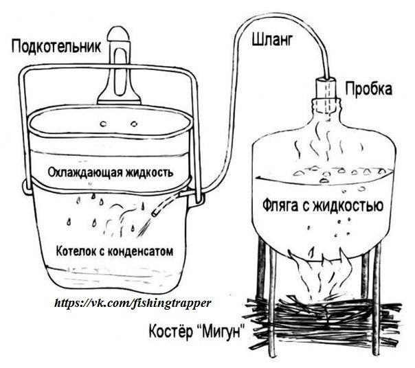 способы очистки от паразитов